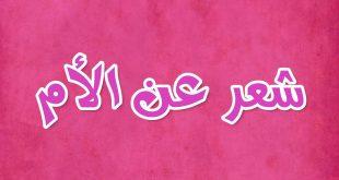 صورة شعر حب عن الام 5803 1 310x165